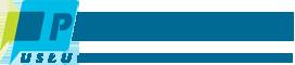 Wsparcie informatyczne Logo